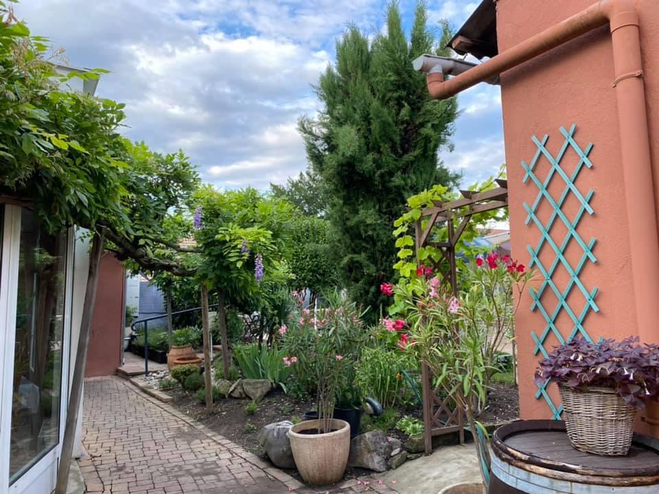 Menus du jour et carte semaine 31 - Restaurant Le Vinci à 68 Sausheim